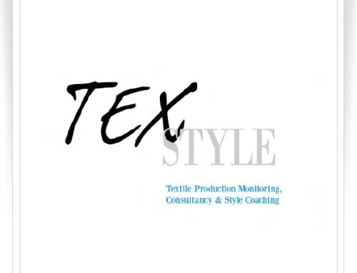 TexStyle Consulting – Logo